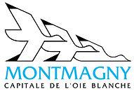 ville_montmagny-1024x698.jpg