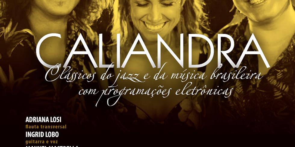 - 33ª Edição - Caliandra