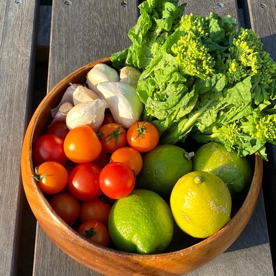南房総産の野菜