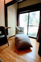 twin sofa 02.JPG