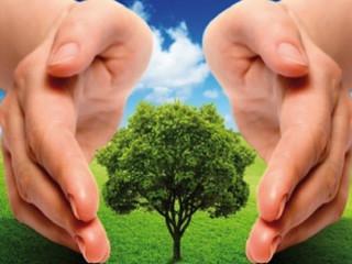 Cientistas se reúnem para reafirmar preocupação com o meio ambiente