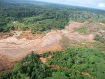 Humanos colocam em perigo um terço das reservas naturais da Terra