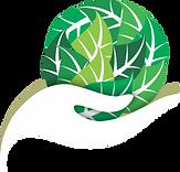 vetor ambiental.png