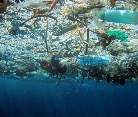 NOAA – Marine Debris Program