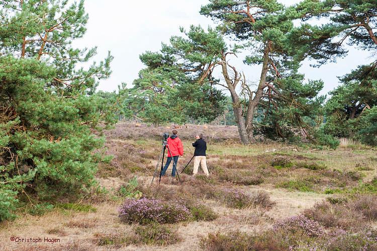Fotografen in der Heide