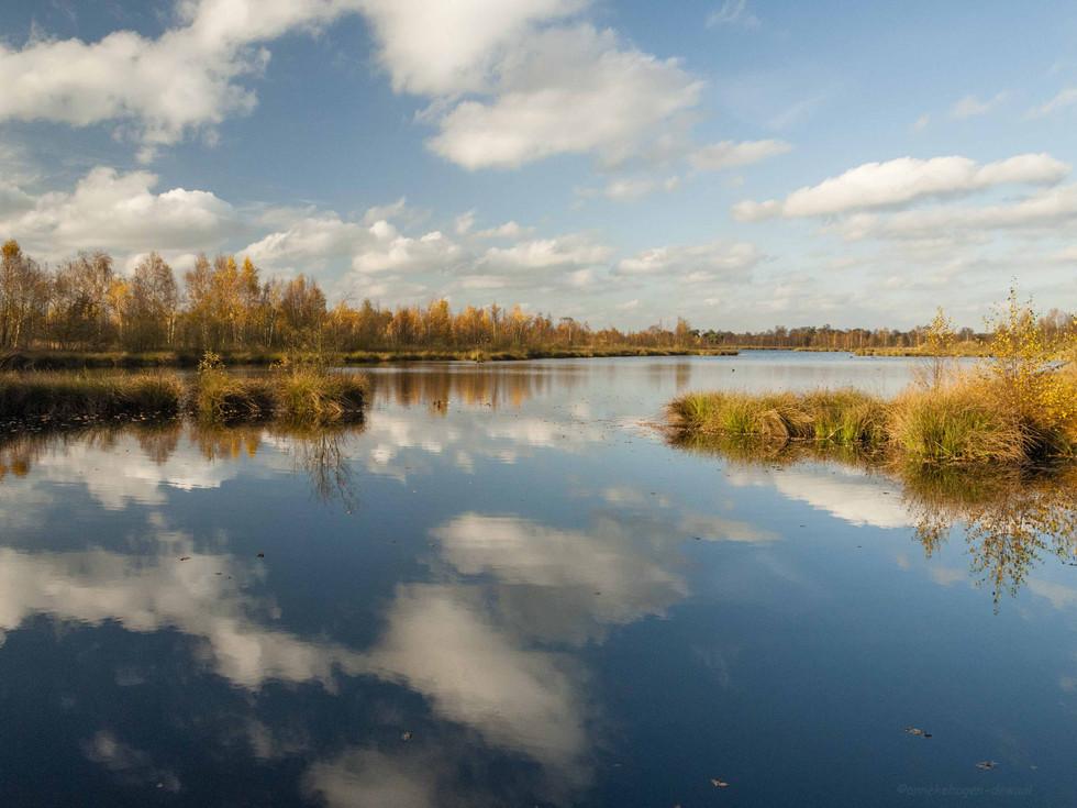 de groote Peel - Niederlande