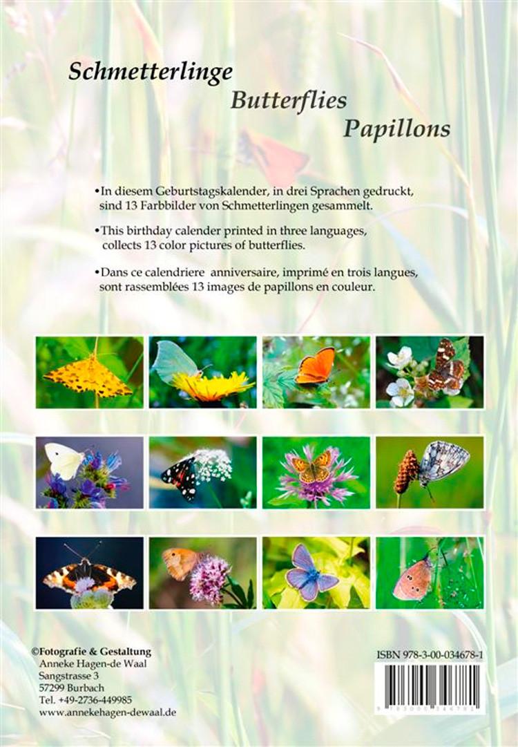 Kleiner Fuchs, Small Tortoiseshell, Le Petit Tortue, Nymphallis urticae