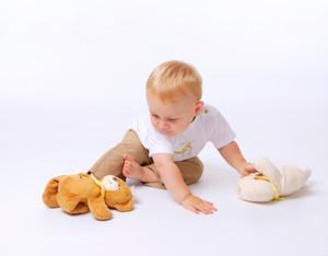 Babyfoto oder doch lieber den Braunen?
