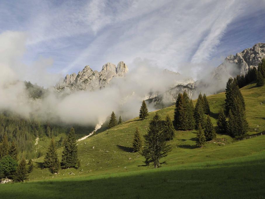 Bischofsmütze mit Almwiesen nebelumhaucht