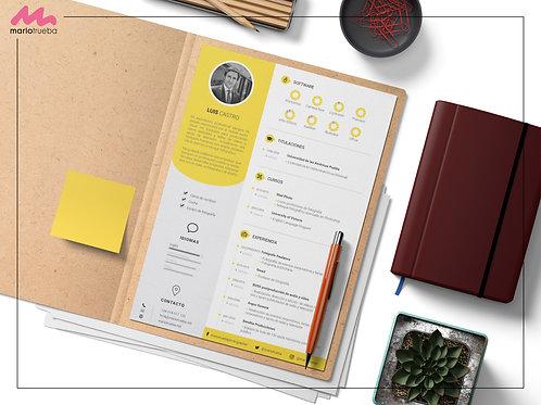 Diseño de currículo