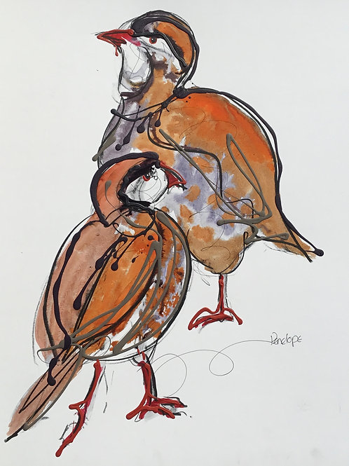 In every Direction. Partridges