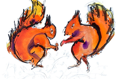 Two Red Squirrels