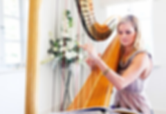 Harpist 2 png_400px.png