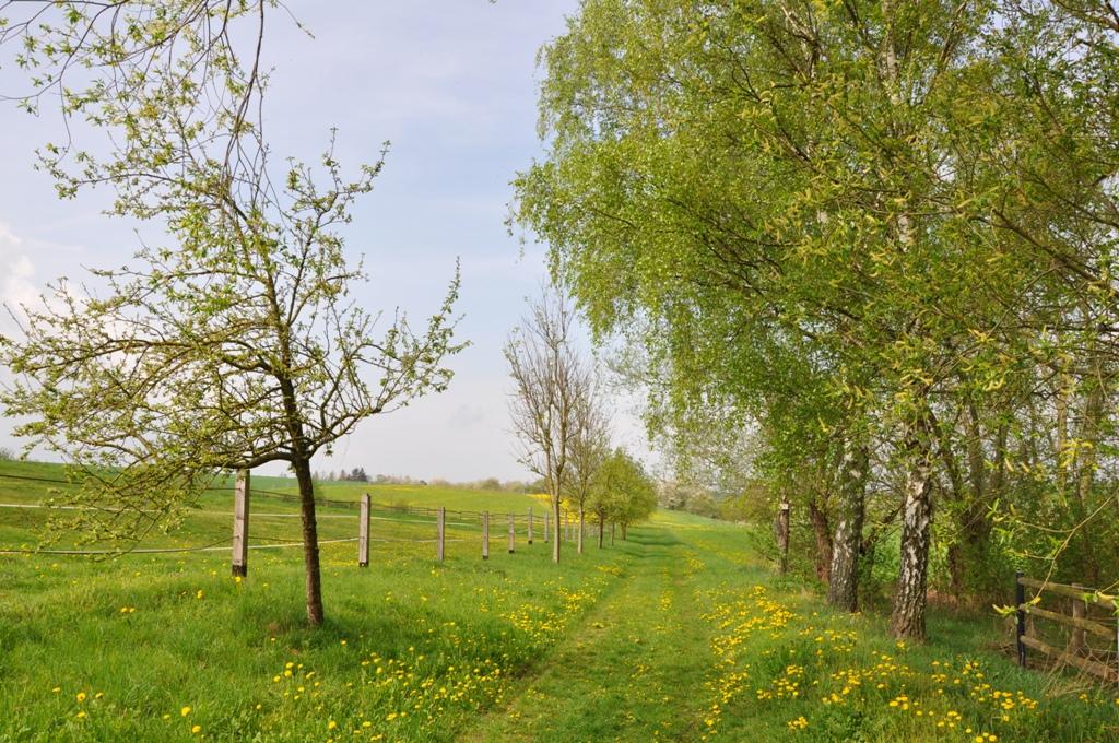 Natur zum Anfassen | Othal