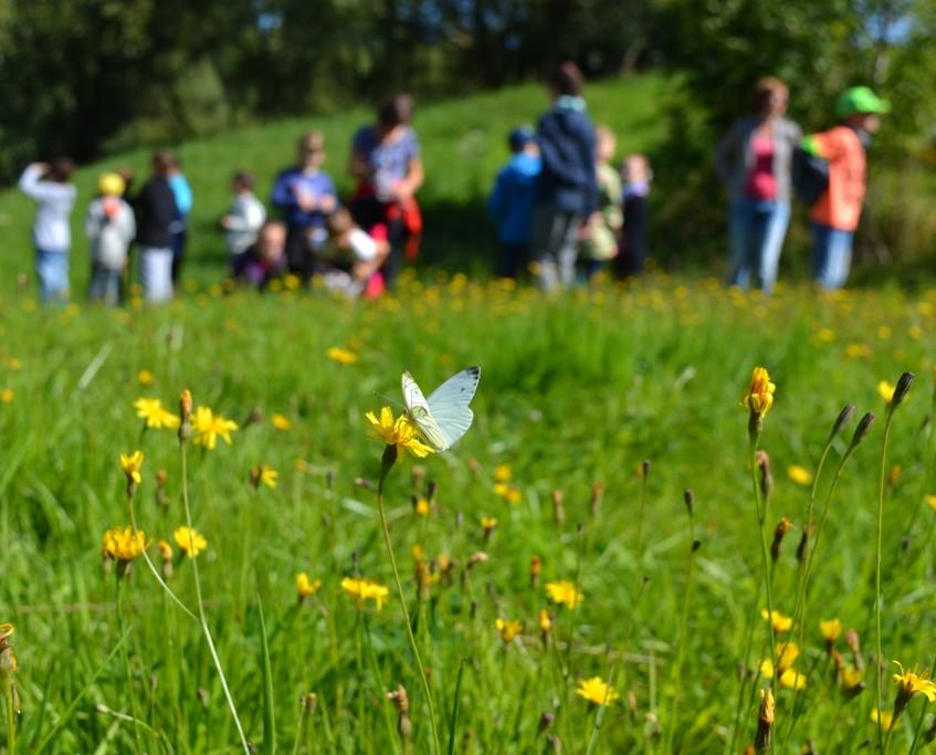 Natur zum Anfassen im Vogtland