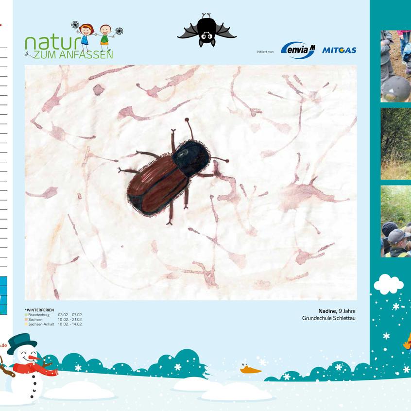 Kalender NzA_2020_Februar