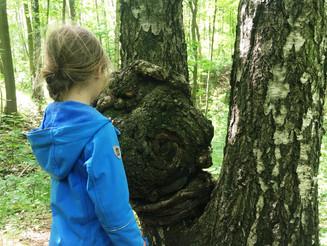 Unterricht in die Natur verlegen
