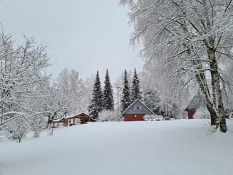 Verschlafener Winterwald bei unserem Partner im Erzgebirge!