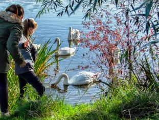 """Urlaub zu Hause: Ferienzeit bei """"Natur zum Anfassen""""-Partnern"""