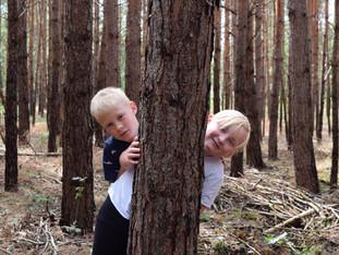 21 Schulklassen erforschten in Brandenburg den Lebensraum Wald