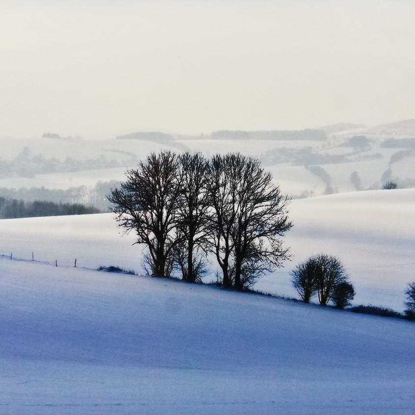 Winterlandschaft Erzgebirge