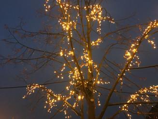 Schöne Weihnachten und einen gesunden Rutsch