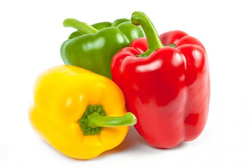 Spanische Paprika rot gelb grün