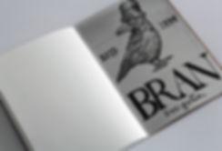 Bran_Sketchbook_Mockup_2.jpg