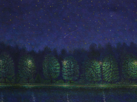 소원 바라기  116.8 x 80.3 cm Acrylic on canvas 2011
