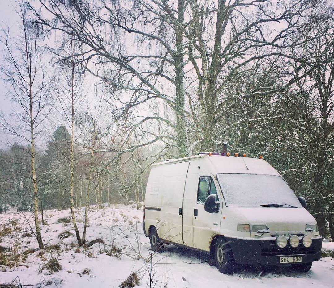 Wintertime in the swedish woods.JPG