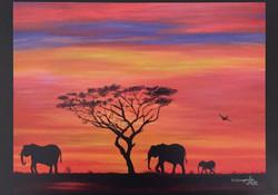8.AFRICA