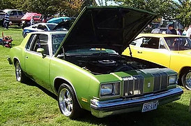 Joe Hernandez 1979 Oldsmobile Cutlass.we