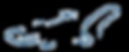 Iguana company logo