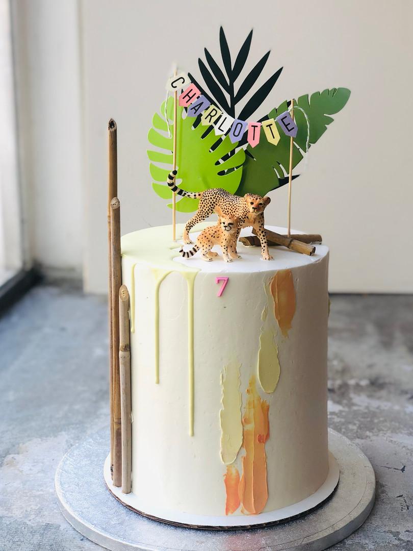 Safari modern cake, 90 euros