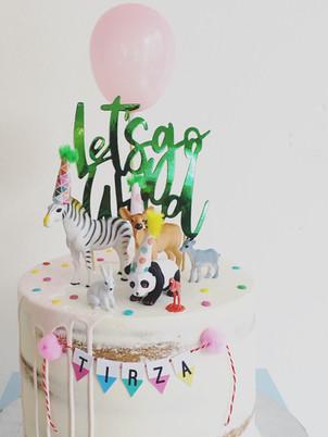 Wild cake party, from 95,00euros