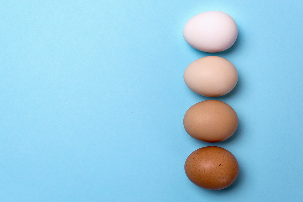 Shell egg to liquid egg represents many advantages to the consumer, as well as environment
