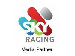 Sky Media Partners.png