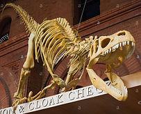 dinousaur-skeleton-at-cloak-check-of-the