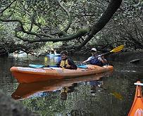 adventure-kayaking-sa.jpg