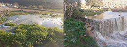 מתנחלים מזרימים ביוב לשטחיהם החקלאיים של שכניהם הפלסטינים