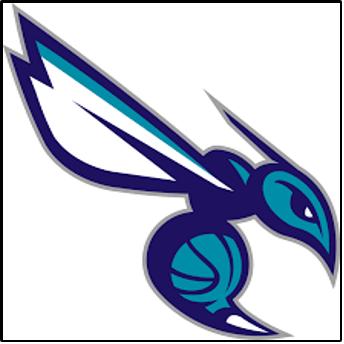 Hornets Junior Basketball Club