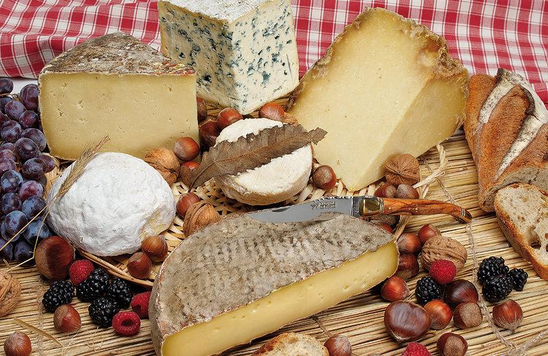 Plateau defromages d'Auvergne. AOP. Terroir, tradition fromage.