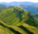Monts du Cantal, Volcan, Puy Mary, montagne, vacances, vert, nature.