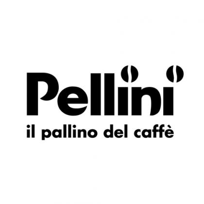 pellini  Supply Chain Management