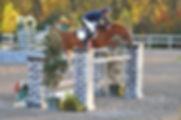 B254-11-032-Jumpers,SatWk10.JPG