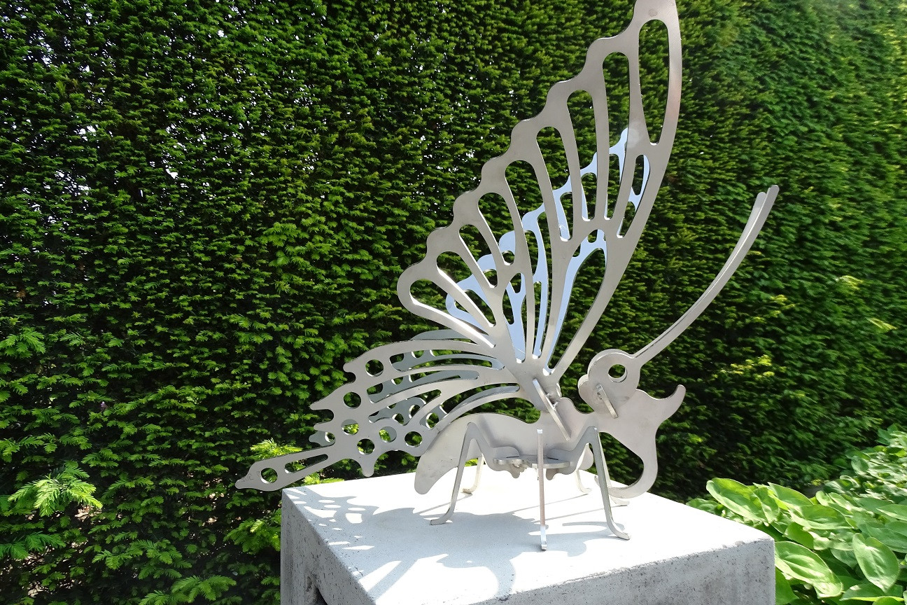 vlinder inox2.jpg
