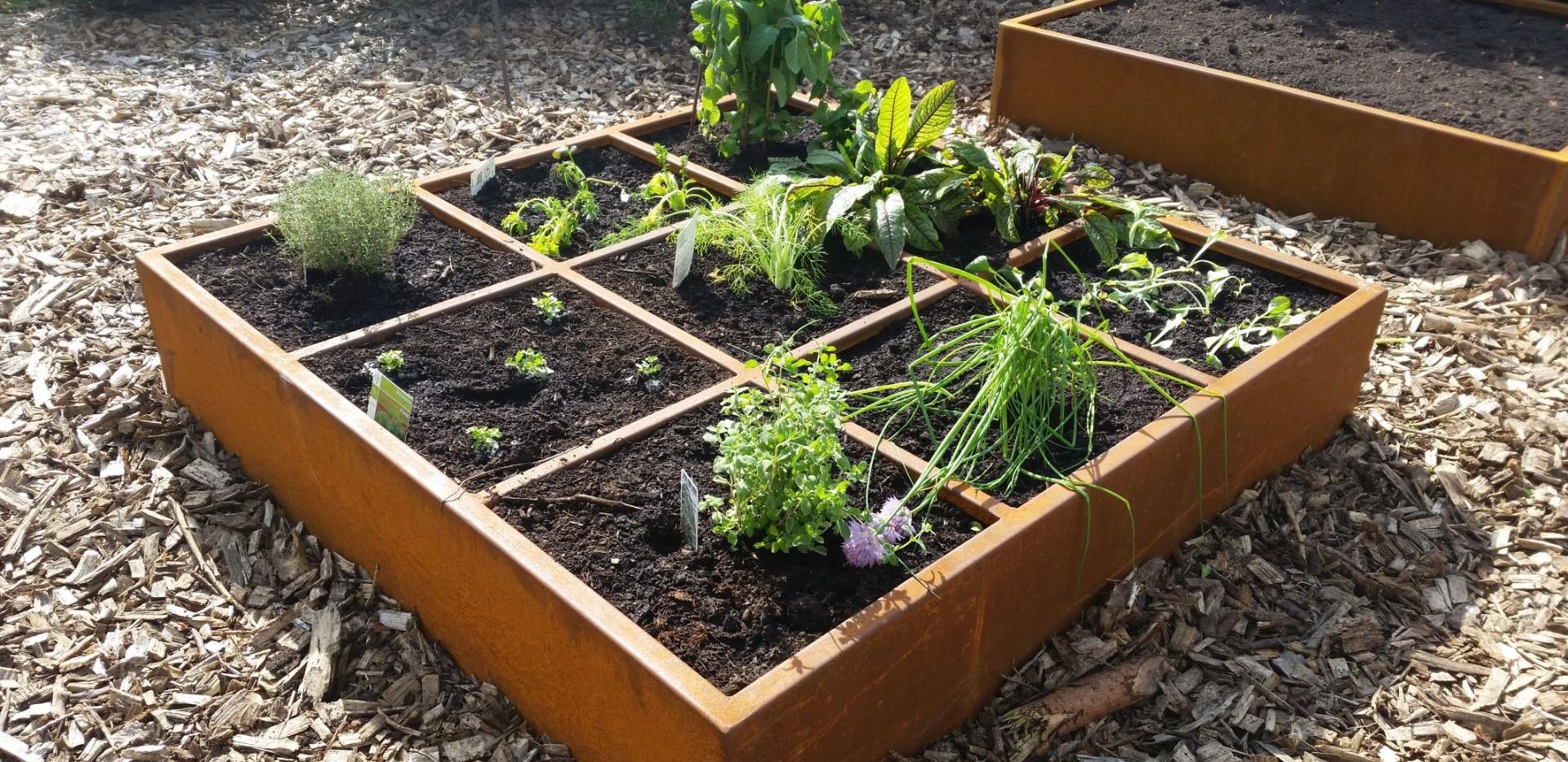 Vierkante meter plantenbak klein.jpg