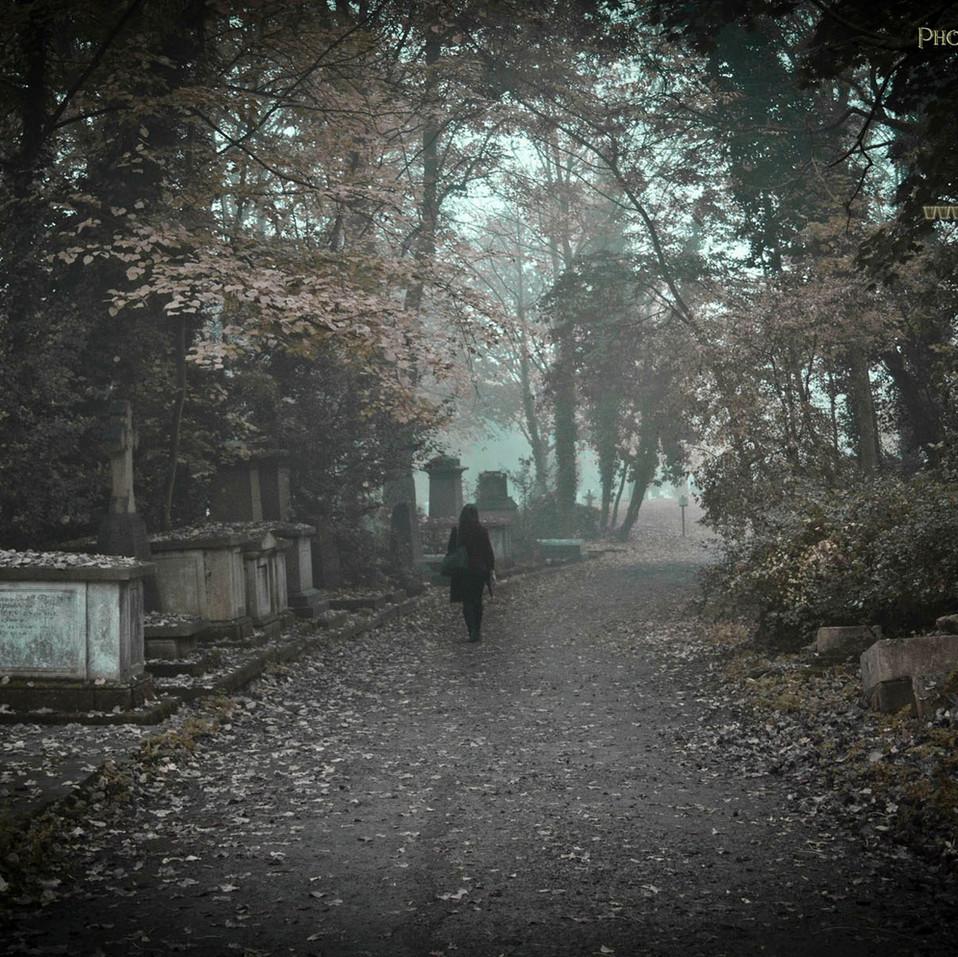 Nunshead Cemetery, By JR Pepper