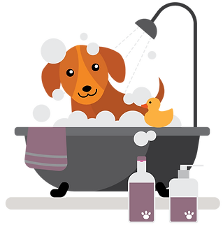 bath3.png