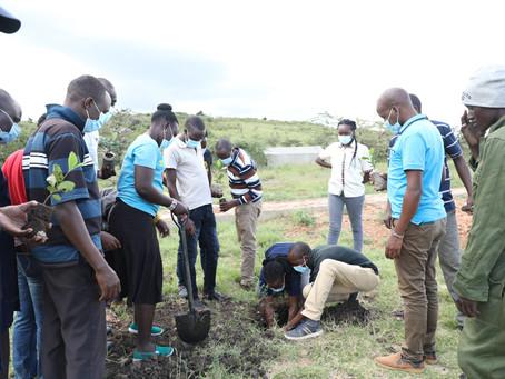 The Maa Trust Staff Plants Trees